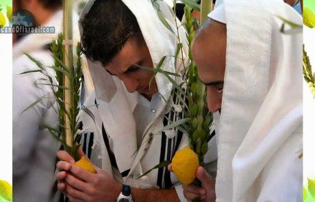 Sukkot: A Celebration for Every Nation
